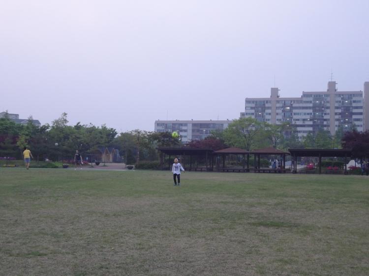 23 - Daeheyon Park